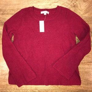 Brand new Ann Taylor Loft sweater.